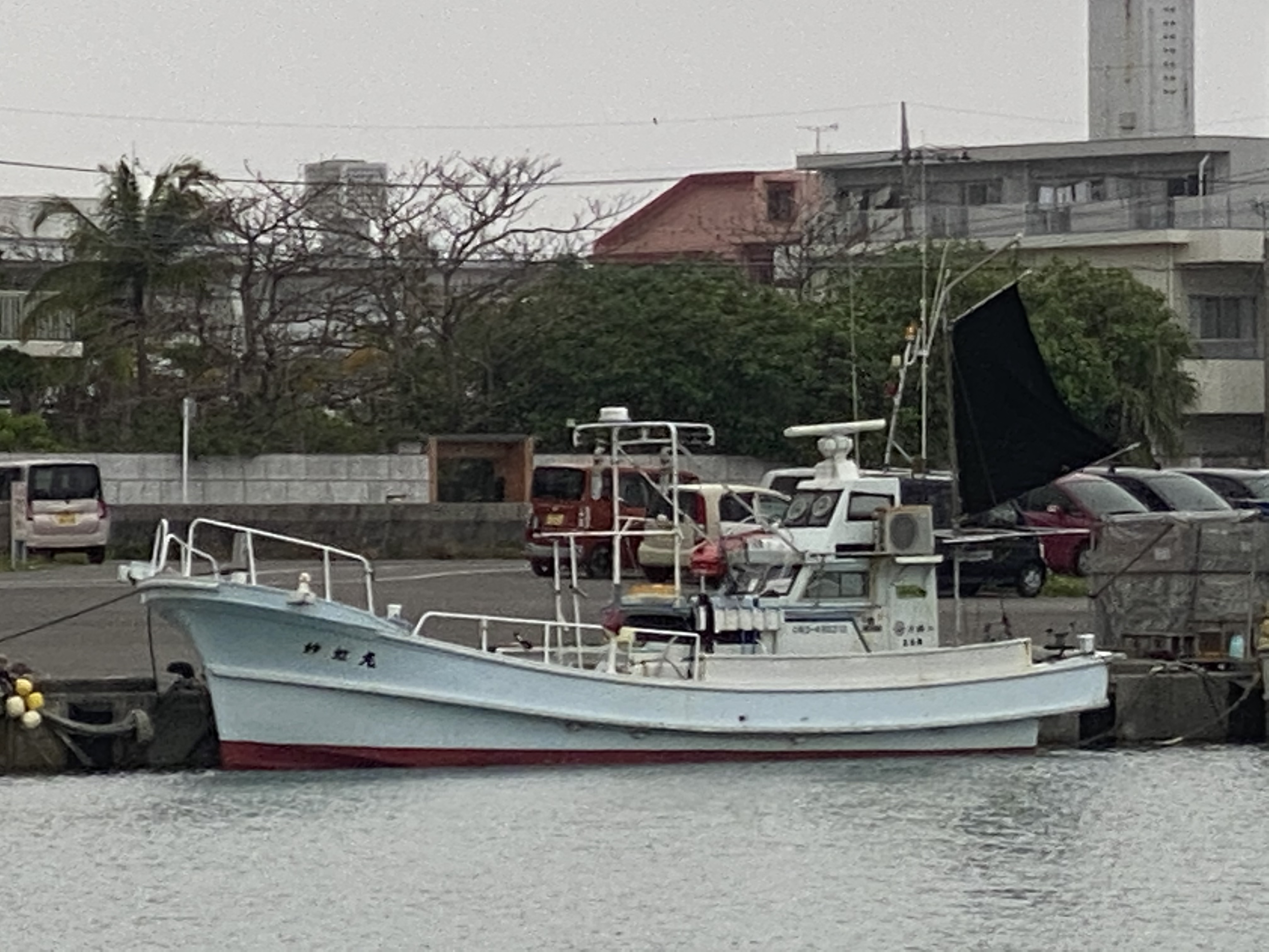 石垣島釣り船 fishing reef